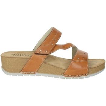 Zapatos Mujer Zuecos (Mules) Novaflex FALERONE Marrón cuero