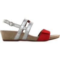Zapatos Mujer Sandalias Benvado 28021001 Otros