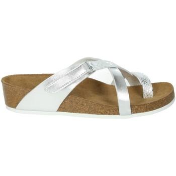 Zapatos Mujer Chanclas Novaflex BREGANO Plata