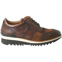 Zapatos Hombre Zapatillas bajas Calce 1111 Marrón