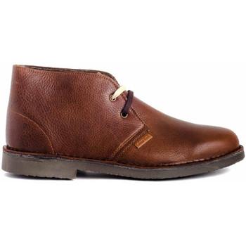 Zapatos Hombre Botas de caña baja Colour Feet MOGAMBO WARM Marrón