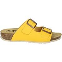 Zapatos Mujer Zuecos (Mules) Novaflex FELETTO Amarillo