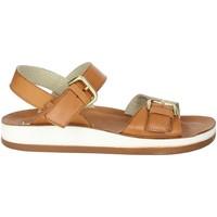 Zapatos Mujer Sandalias Novaflex FALMENTA Marrón cuero
