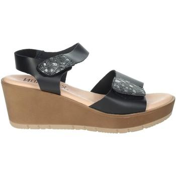 Zapatos Mujer Sandalias Novaflex BASSIGNANA Negro