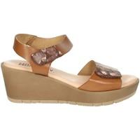Zapatos Mujer Sandalias Novaflex BASSIGNANA Marrón cuero