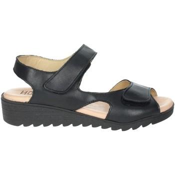 Zapatos Mujer Sandalias Novaflex BASSANO Negro