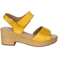 Zapatos Mujer Sandalias Novaflex BASCHI Mostaza