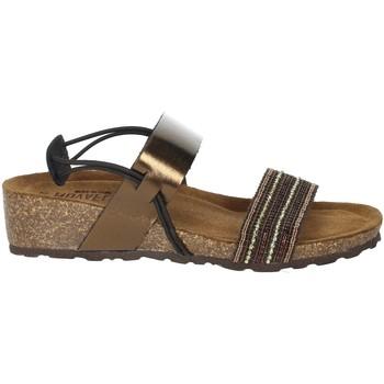 Zapatos Mujer Sandalias Novaflex AMBIVERE Bronce