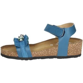 Zapatos Mujer Sandalias Novaflex AGLIE Azul