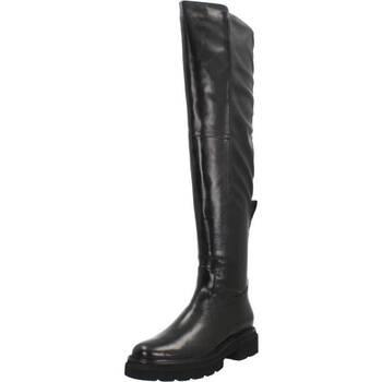 Zapatos Mujer Botas a la rodilla Bruno Premi BC0206 Negro