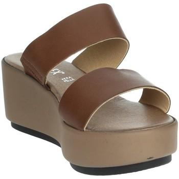 Zapatos Mujer Zuecos (Mules) Novaflex ACQUARICA Marrón