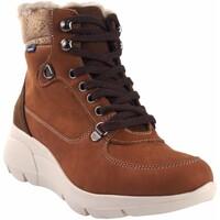 Zapatos Mujer Multideporte Baerchi Botín señora  55203 cuero Marrón