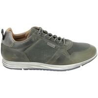 Zapatos Zapatillas bajas Bullboxer Sneaker 53AGNGR Vert Verde