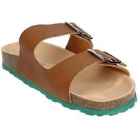 Zapatos Hombre Zuecos (Mules) Novaflex BRENNA Marrón cuero