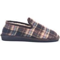 Zapatos Hombre Pantuflas Berevere IN9750 Marrón