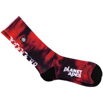 Accesorios Hombre Calcetines Element Pota skate socks Rojo