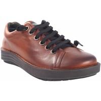 Zapatos Mujer Zapatillas bajas Chacal Zapato señora  5620 cuero Marrón