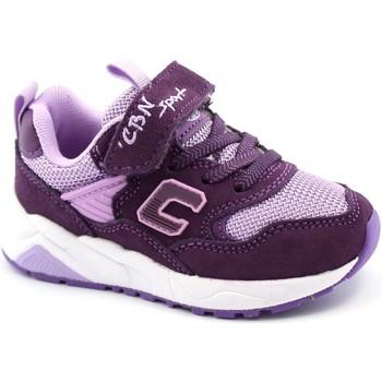 Zapatos Niños Zapatillas bajas Balocchi BAL-I21-818342-VI-a Viola