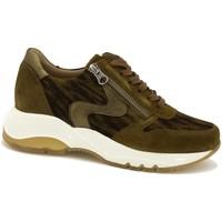 Zapatos Mujer Zapatillas bajas Piesanto 215726 Marrón