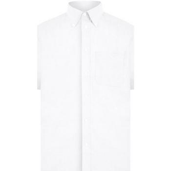 textil Hombre Camisas manga corta Absolute Apparel  Blanco