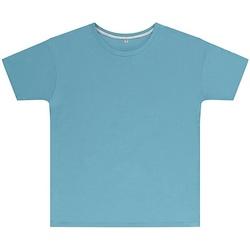 textil Niños Camisetas manga corta Sg SGTEEK Azul cielo
