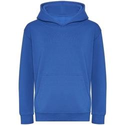 textil Niños Sudaderas Awdis J201J Azul