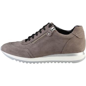 Zapatos Mujer Zapatillas bajas Arnaldo Toscani  Marrón Rosy