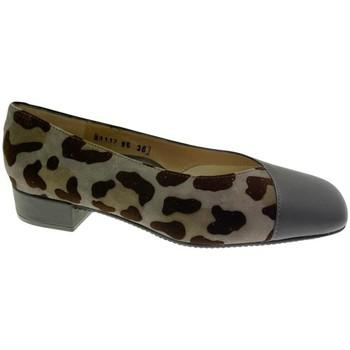 Zapatos Mujer Bailarinas-manoletinas Calzaturificio Loren LOA1117 nero