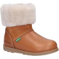 Zapatos Niños Botas de nieve Kickers 878683-10 NONOFUR Marr?n