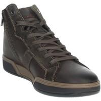 Zapatos Hombre Zapatillas altas Imac 802880 Marrón