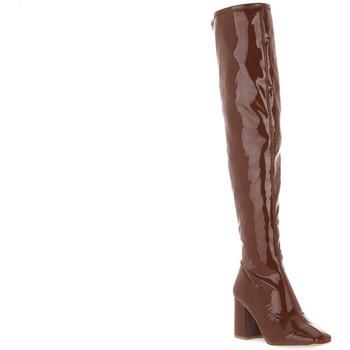 Zapatos Mujer Botas a la rodilla Steve Madden COGNAC JAYME Marrone