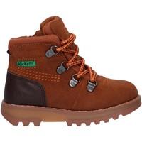 Zapatos Niños Botas de caña baja Kickers 878760-10 KICKNATURE Marr?n