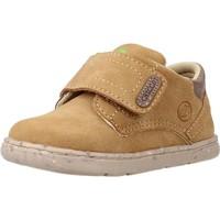 Zapatos Niño Botas Chicco GAPPER Marron