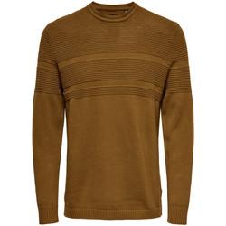 textil Hombre Jerséis Only & Sons  22020639 Marrone