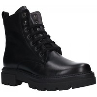 Zapatos Mujer Botines Pitillos 1120 Mujer Negro noir