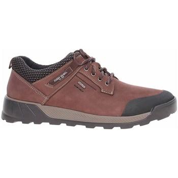 Zapatos Hombre Zapatillas bajas Josef Seibel 32351TE21391 Marrón