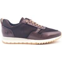 Zapatos Hombre Zapatillas bajas Agot ALAN Marrón