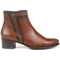 Zapatos Mujer Low boots Dorking D8587 marrón
