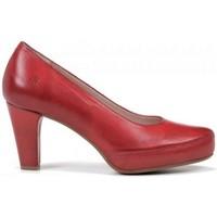 Zapatos Mujer Zapatos de tacón Dorking D5794 ROJO-ROJO