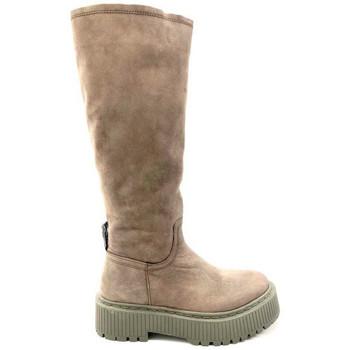 Zapatos Mujer Botas urbanas Musse & Cloud BOTA PLATAFORMA KACKY