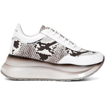 Zapatos Mujer Zapatillas bajas Café Noir GGDC902 368 ROCCIA