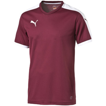 textil camisetas manga corta Puma Pitch Shortsleeved Shirt