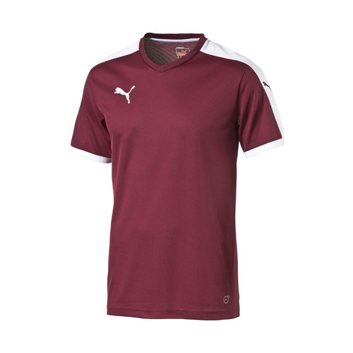 textil camisetas manga corta Puma Pitch Shortsleeved Shirt Multicolor