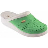 Zapatos Hombre Zuecos (Clogs) Sanital  Verde
