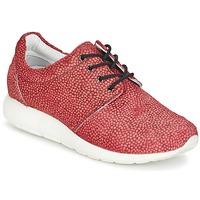 Zapatos Mujer Zapatillas bajas Maruti WING Rojo