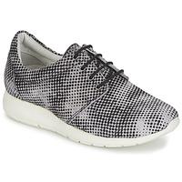 Zapatos Mujer Zapatillas bajas Maruti WING Marrón