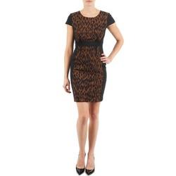 textil Mujer vestidos cortos Manoukian EMMA Negro / Leopardo