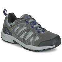 Zapatos Hombre Senderismo Hi-Tec ALTO II LOW WP Carbón / Azul