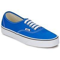Zapatos Zapatillas bajas Vans AUTHENTIC Azul / Blanco