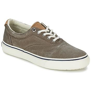 Zapatos Hombre Zapatillas bajas Sperry Top,Sider STRIPER CVO Chocolate